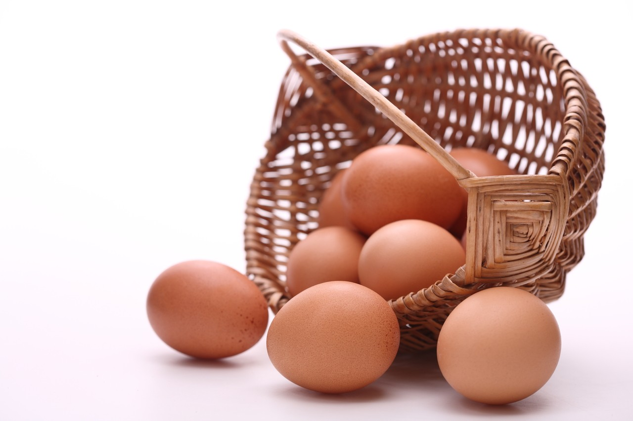 Consommation oeuf1